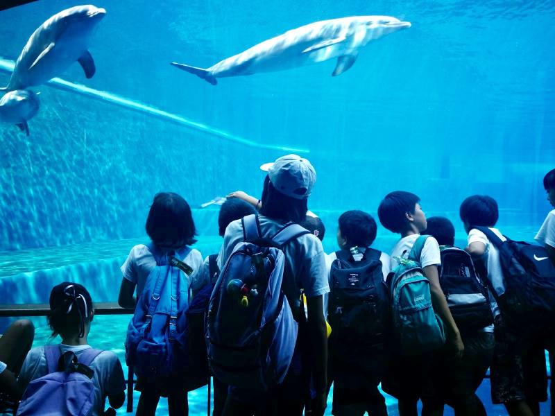 ジェノバ遠足:水族館